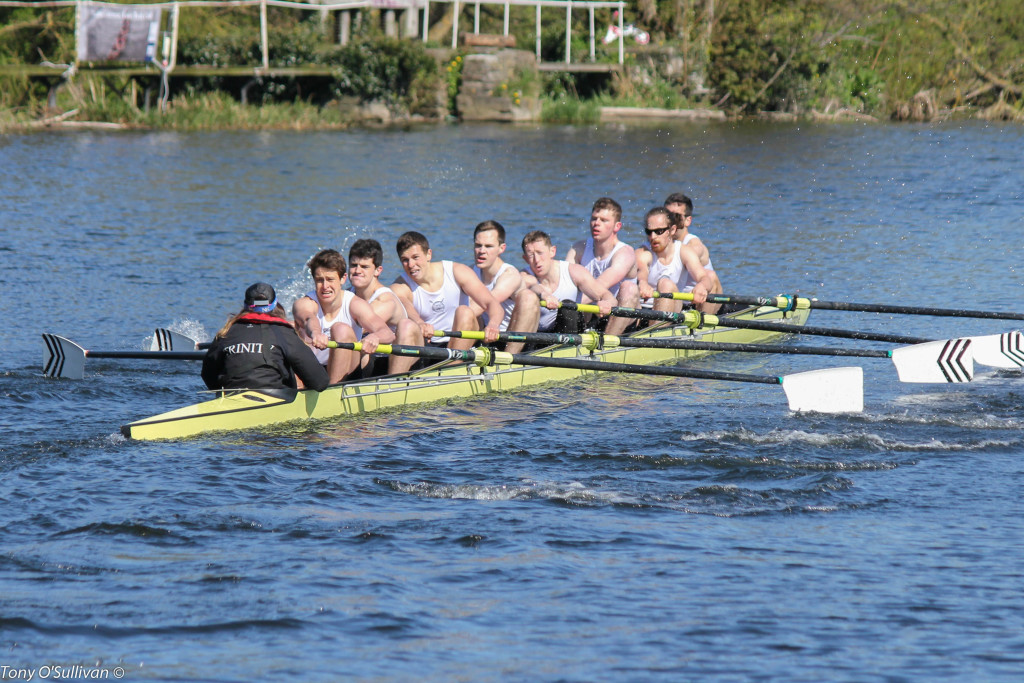 The Novice Eight, just pipped by Queen's University Belfast!